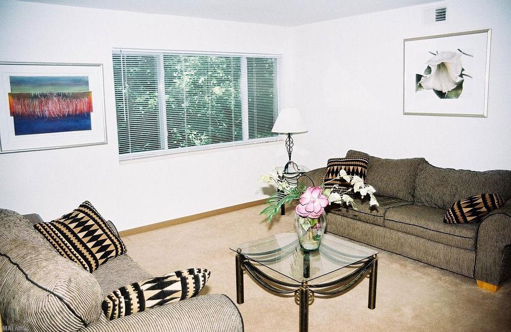 2 Sofas in Monona Living room